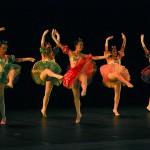 Dancarte 2012 19